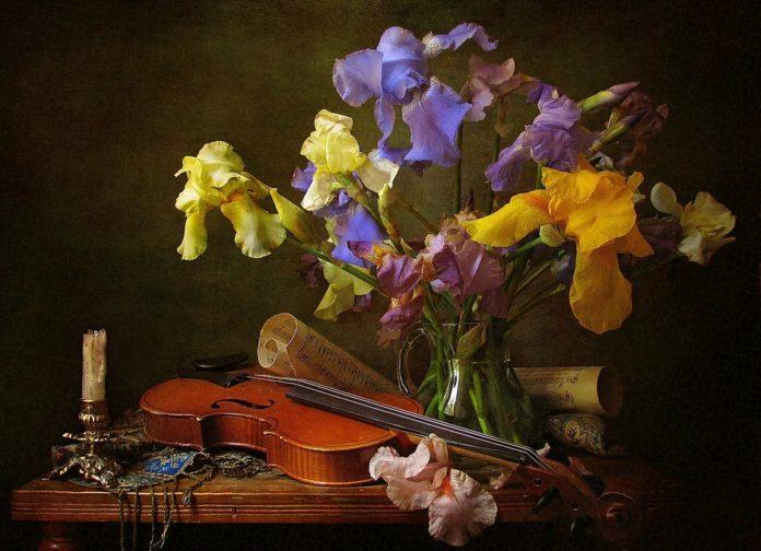 красивые мелодии для скрипки